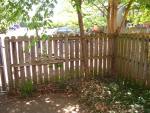 fenced yard